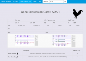 chisg-browser-expression-card-2016-09